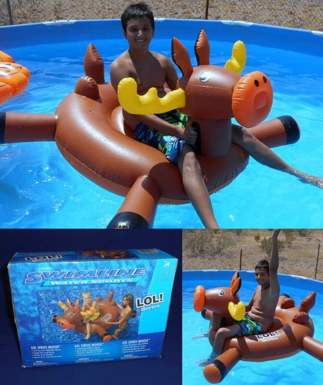 SwimlineMooseCollage.jpg