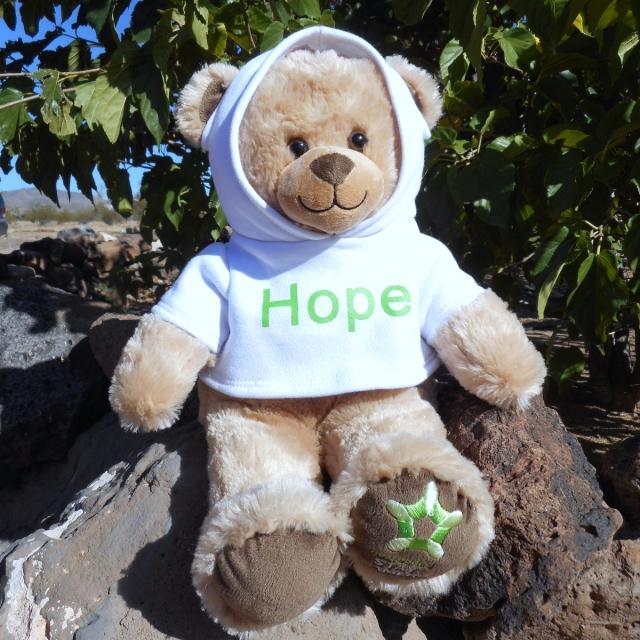 HopeBear.jpg